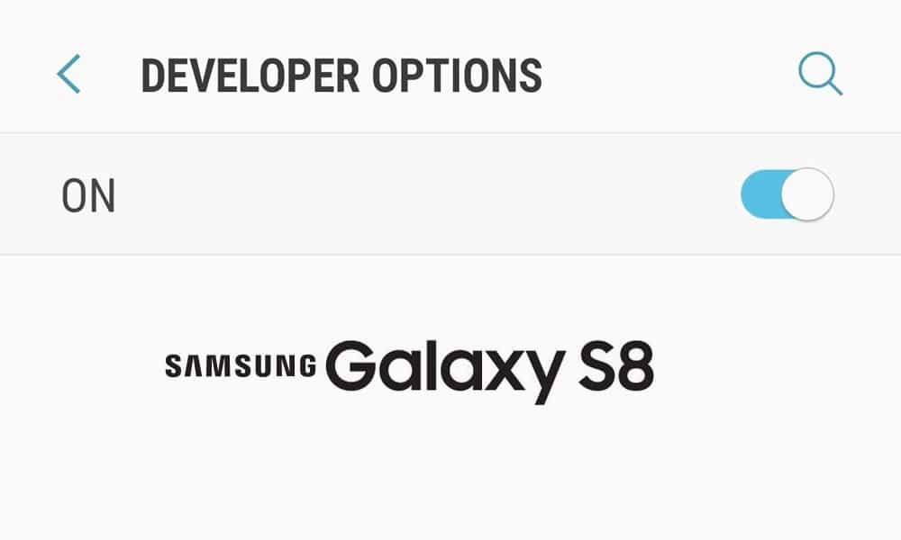Developer Mode on Samsung Galaxy S8